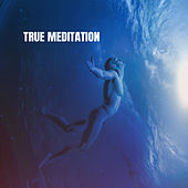True Meditation de Various Artists