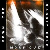 Down the Rabbit Hole by Morfiouz