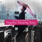Peaceful Sleeping Rain by Rainfall For Sleep