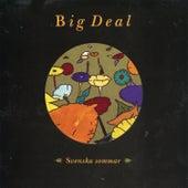 Svenska sommar von Big Deal
