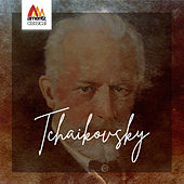 Tchaikovsky de Various Artists
