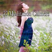 55 Meditation Calmers de Nature Sounds Artists
