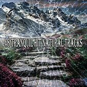 48 Tranquil Hit Natural Tracks von Lullabies for Deep Meditation