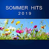 Sommer Hits 2019 by Various Artists