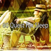 80 Quest for Sleep de White Noise Babies