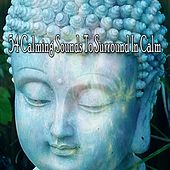 54 Calming Sounds to Surround in Calm de Zen Meditation and Natural White Noise and New Age Deep Massage