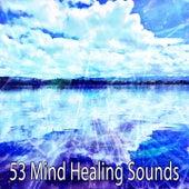 53 Mind Healing Sounds von Massage Therapy Music