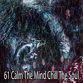 61 Calm the Mind Chill the Soul by Relajación