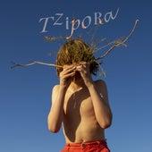 Tzipora by Anat Ben David