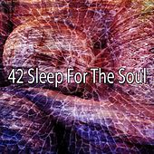42 Sleep for the Soul von Water Sound Natural White Noise