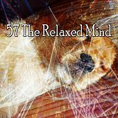 57 The Relaxed Mind by Serenity Spa: Music Relaxation