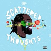 Scattered Thoughts de Chip