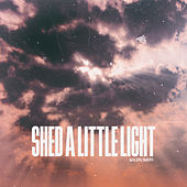 Shed a Little Light von The Wildflowers