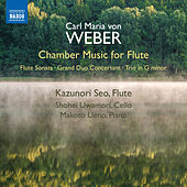 Weber: Chamber Music for Flute by Various Artists