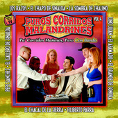 Puros Corridos Malandrines Vol. 4 de Various Artists
