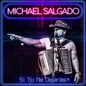 Si Me Dejaras de Michael Salgado
