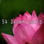 54 Dream Lucid de Sleepicious