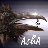 Vibrate von Asha