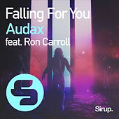 Falling for You by AUDAX