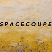 Space Coupe de CBA Bankroll