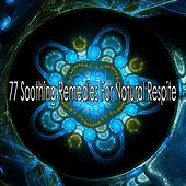 77 Soothing Remedies for Natural Respite von Massage Therapy Music