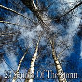 23 Sounds of the Storm by Rain Sounds and White Noise