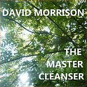 The Master Cleanser by David Morrison