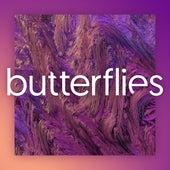 Butterflies de Soulé