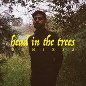 Head In The Trees (Remixes) von Hotel Garuda