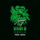 Koala (feat. NKSN) von Laruzo