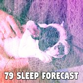 79 Sleep Forecast von Rockabye Lullaby