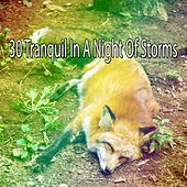 30 Tranquil in a Night of Storms by Rain Sounds and White Noise