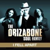 I Fell Apart (single) by Drizabone Soul Family