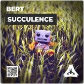 Succulence de Bert
