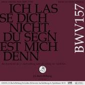 Bachkantate, BWV 157 - Ich lasse dich nicht, du segnest mich denn von Orchester der J. S. Bach-Stiftung