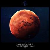 Serendipity Muzik - The Extended Mixes (Vol. 1) de Various Artists