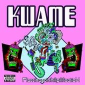 Floccinaucinihilipilification von Kwame