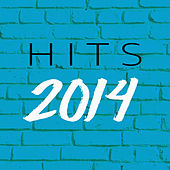 2014 Hits van Various Artists