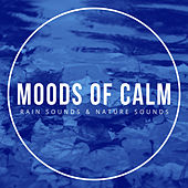 Moods of Calm by Rain Sounds