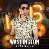 Bora von Washington Brasileiro
