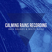 Calming Rains Recording by Rain Sounds and White Noise