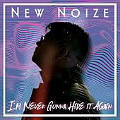 I'm Never Gonna Hide It Again von New Noize