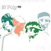 16 Poly de 16 Poly