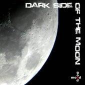 Dark Side Of The Moon von Various Artists