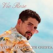 Yo Sé Lo Que Te Gusta de Vic Rose
