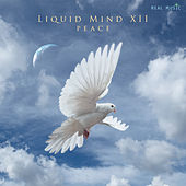 Liquid Mind XII: Peace von Liquid Mind