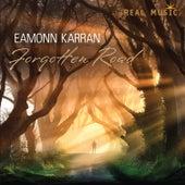 Forgotten Road de Eamonn Karran