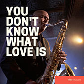 You Don't Know What Love Is by Marvin Gaye