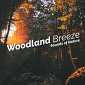 Woodland Breeze by Various Artists