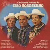 Os Grandes Sucessos do Trio Nordestino von Trio Nordestino